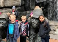 2nd Grade Field Trip to the Zoo